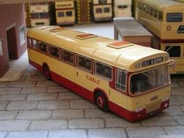 Leyland Leopard | Model Buses | Leyland Leopard Dual Purpose Livery
