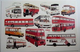 Ribble 1989 70 Years of Operation 1919 - 1989 | Postcards | Caption Text