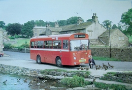 Ribble - Betty's Bus | Postcards