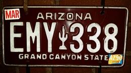 Arizona Passenger License Plate | License Plates | Arizona new registration license plate from March, 1990.