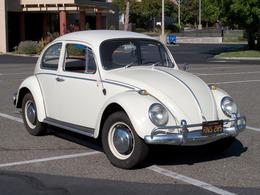 Volkswagen 1500 sedan cars 7ce53e98 00d5 4a51 985e 629ff39289e4 medium