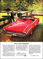 How To Catch A Thunderbird   Print Ads