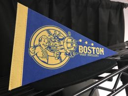 Fallout 4 Mini Pennant - Boston Vault Dwellers | Flags, Banners & Pennants