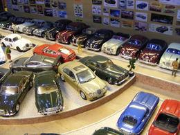 Museum Collection Dispay | Dioramas | Jaguar Collection