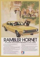 Rambler hornet print ads b835d8ce ca38 4dfe b1bc 6ed49085f18d medium
