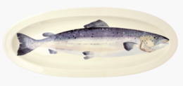 Salmon Long Platter - Emma Bridgewater | Ceramics | Salmon Long Platter
