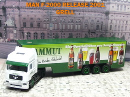 Man f2000 model trucks 9ef25ae3 e55d 49f7 9c68 3daa5837d7a5 medium