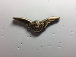 Rockin Wings Second Version | Pins & Badges