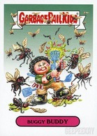 Buggy buddy trading cards %2528individual%2529 1f831673 20a0 4ad0 9801 ce1472842b8f medium