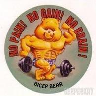Bicep bear trading cards %2528individual%2529 8c32081c 76dc 498b 866e e8cbad47e7a9 medium