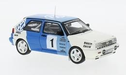 Volkswagen Rallye Golf G60 | Model Racing Cars