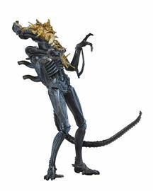 Blue Alien Warrior (Battle Damaged)   Action Figures
