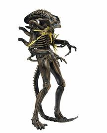 Brown Alien Warrior (Battle Damaged) | Action Figures