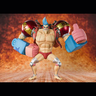 """""""Cyborg"""" Franky 