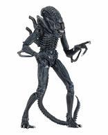 Ultimate alien warrior %25281986%2529 %2528blue%2529 action figures 3435944c d38f 4684 b12f 0b9c5df9ae56 medium