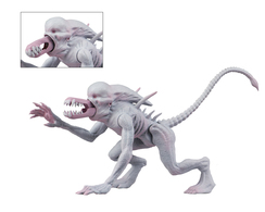 Neomorph action figures caf3e844 2479 4603 a221 2559c8a50263 medium