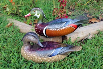 Wood Duck Pair | Decoys