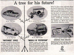 A tree for his future%2521 print ads 9c359f2b 6224 440a 998c a78a533c3326 medium