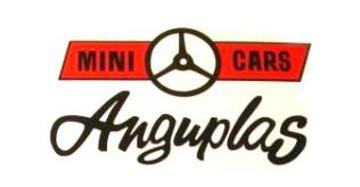 Anguplas logo large