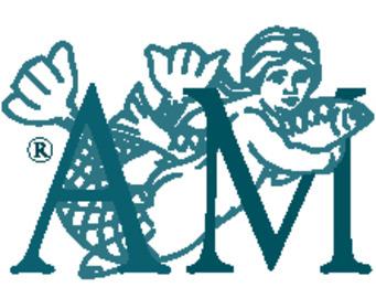 Authentic models logo large