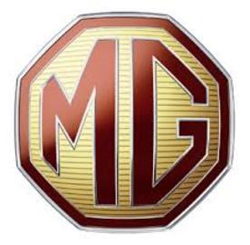 Mg large