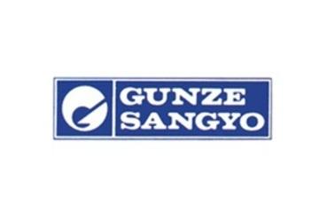 Gunze large