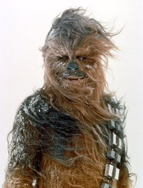 Chewbacca large