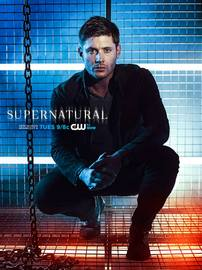 Supernatural promo poster dean in a cage large