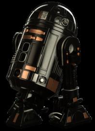 R2 q5 sideshow large