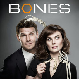 Bones large