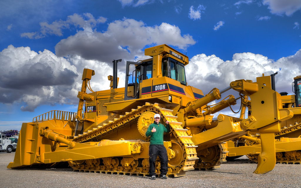 10 Cat D – Quotes of the Day