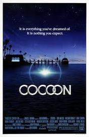 Cocoon large