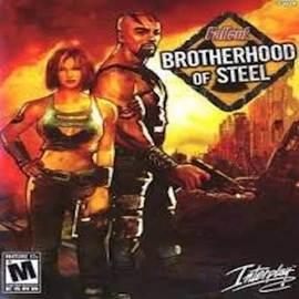 Brotherhood of steel 1 large