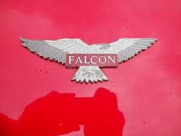 Falcon 20shells 20ltd. 20logo large