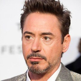 Robert downey jr 1 large