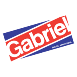 Gabriel shocks 2 large
