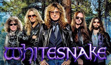 Whitesnake large