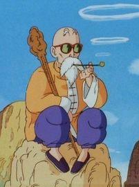 Master roshi anime large