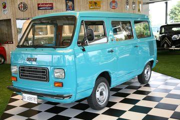 Fiat 20900t 20mini van large