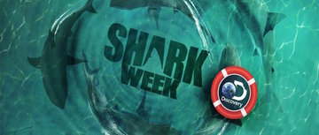 Shark 20week 20logo large