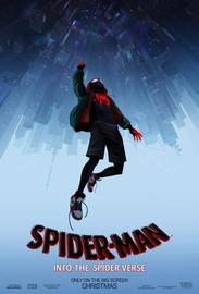 Spider man into the spider verse poster large