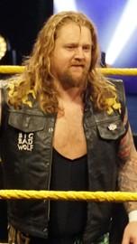 Wolfgang 20 wrestler  large