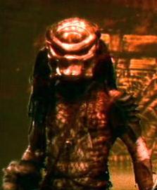 Predator2 97 2 large