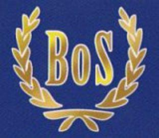 Bos logo large