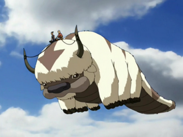 Appa flying large