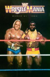 Wrestlemania 20i large