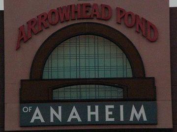 Arrowhead 20pond  large