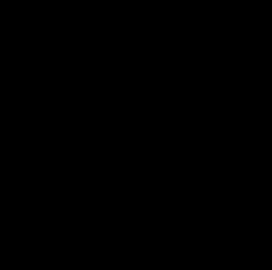 Ninja symbol large