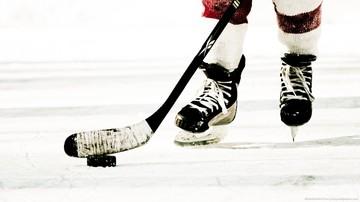 Hockey large